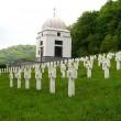 Меморіал біля села Червоне